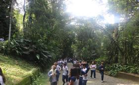 Caminhada ecológica.